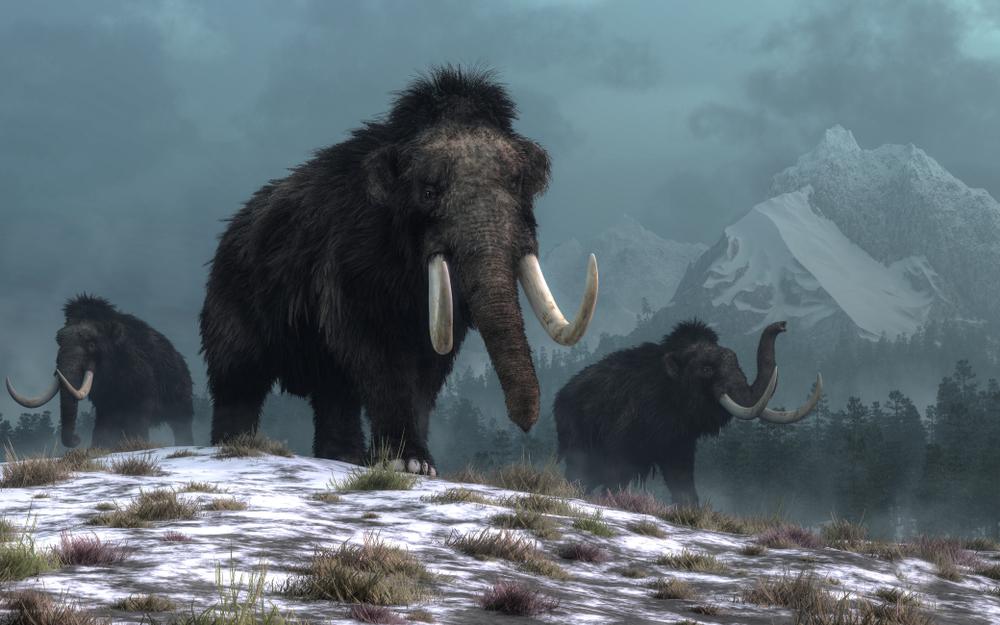 Исследователи определили температуру последнего ледникового периода.Вокруг Света. Украина