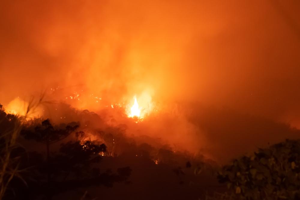 Спутники зафиксировали новый рекорд распространения пожаров в Амазонии.Вокруг Света. Украина