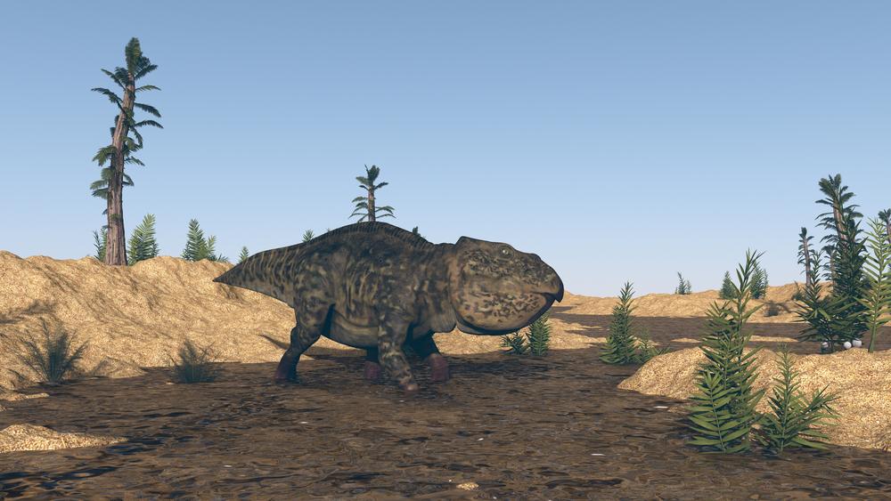 Древний предок млекопитающих впадал в зимнюю спячку.Вокруг Света. Украина