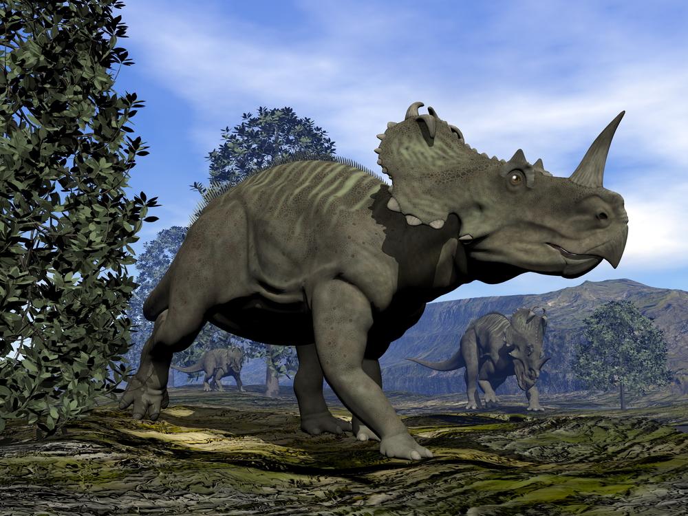 Динозавры тоже болели раком.Вокруг Света. Украина