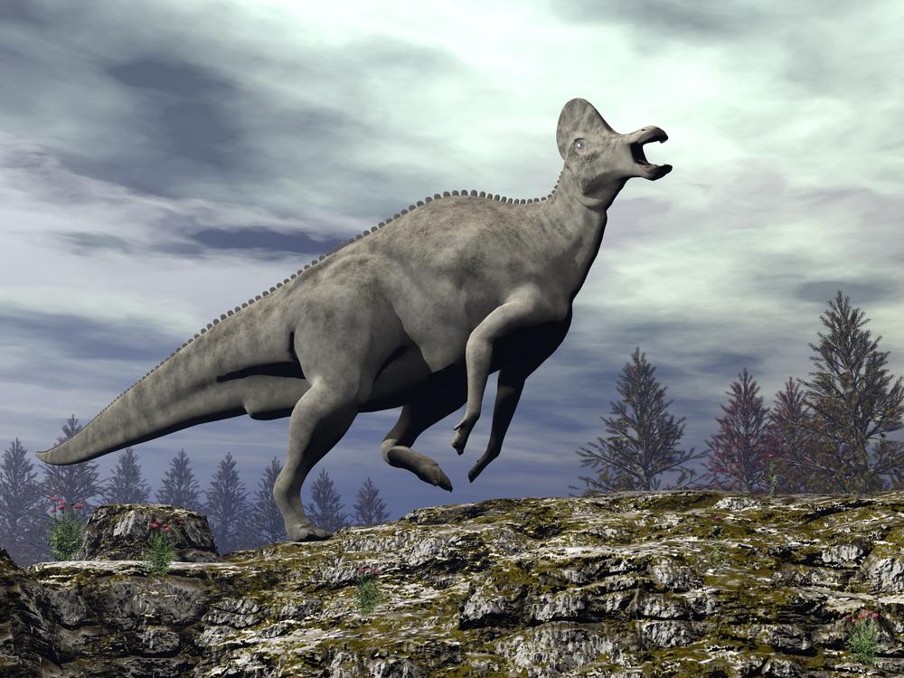 Особое строение костей помогло динозаврам выдерживать большой вес.Вокруг Света. Украина