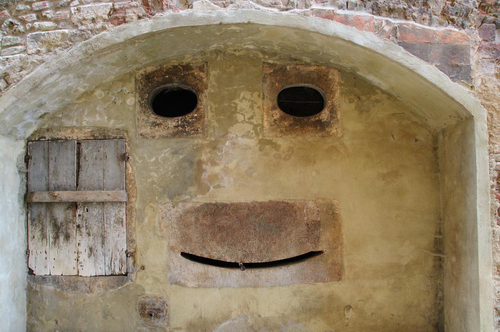 Почему мы видим очертания лиц в случайных предметах.Вокруг Света. Украина