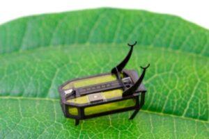Инженеры создали робота - жука, работающего на алкоголе