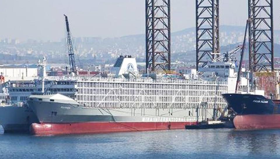 У берегов Японии затонуло судно, перевозившее около 6000 коров
