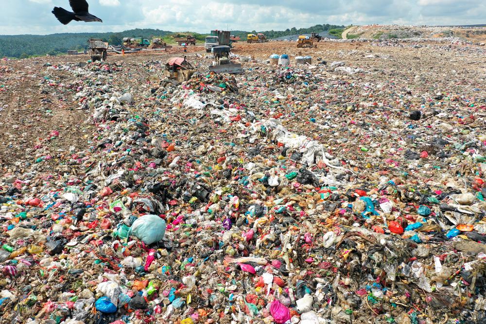 Создан суперфермент, рекордно быстро поедающий пластик.Вокруг Света. Украина