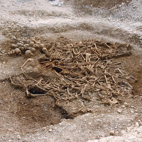 ДНК-анализ показал, что многие викинги были брюнетами