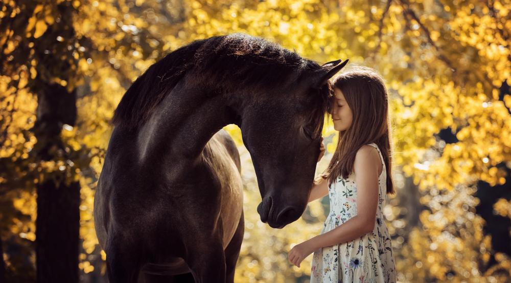 Генетики выяснили, что лошадей одомашнили не в Турции