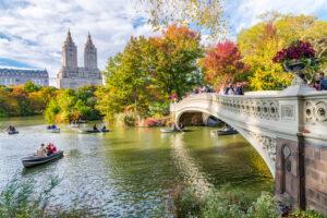 В Нью-Йорке ищут людей, которые будут следить за осенней листвой