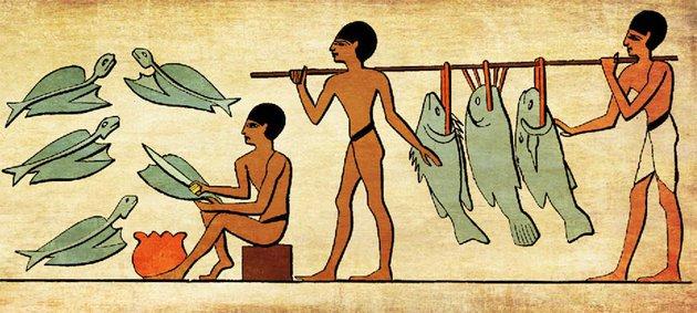 В желудке древнеегипетской мумии нашли обед.Вокруг Света. Украина