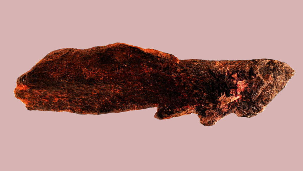 Найден костяной наконечник, который изменит историю.Вокруг Света. Украина