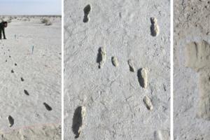 Следы возрастом 10 тысяч лет поведали археологам детективную историю
