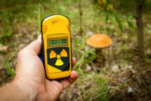 В Германии грибы и дичь до сих пор фонят после Чернобыля