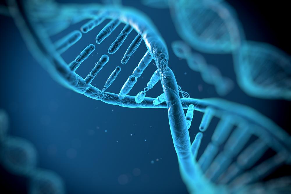 Люди с неандертальскими генами тяжелее переносят COVID-19: исследование.Вокруг Света. Украина