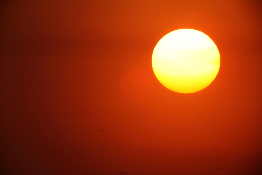 Какого цвета Солнце?