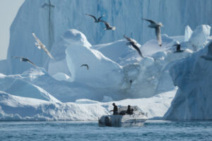 Льды Гренландии тают быстрее, чем за все последние 12 000 лет