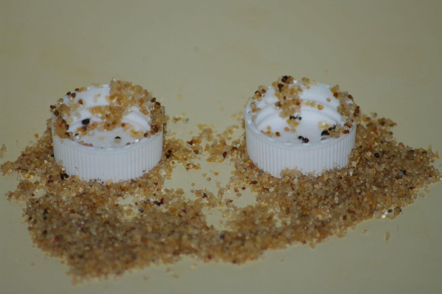 В Китае лабораторные муравьи изобрели сифон