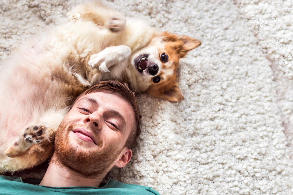 Собаки перенимают характер хозяев