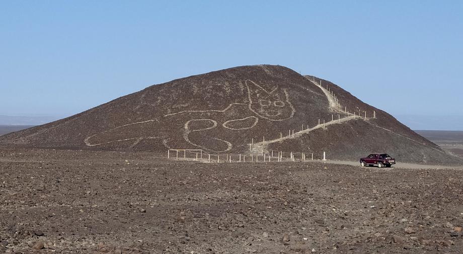 На плато Наска обнаружили новый геоглиф – 37-метровую кошку.Вокруг Света. Украина