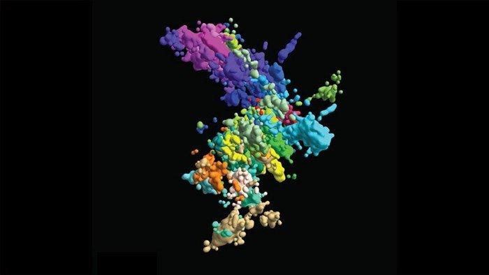 Ученые изобразили хромосому точнее, чем когда-либо, с помощью 3D-технологий