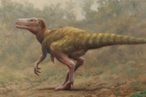 Найденные в Ирландии кости динозавров принадлежат разным видам