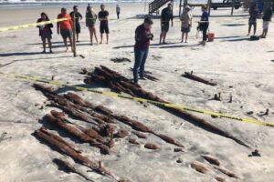 Во Флориде ураган «Эта» обнажил следы кораблекрушения XIX века