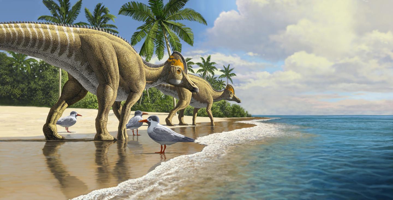 В Африке нашли кости динозавра, которого там не могло быть.Вокруг Света. Украина