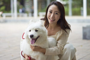 В китайской провинции запретили выгул собак. И карантин тут ни при чем