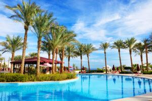 Египет зимой: чем заняться и какой отель в Шарм-эль-Шейхе лучше выбрать?