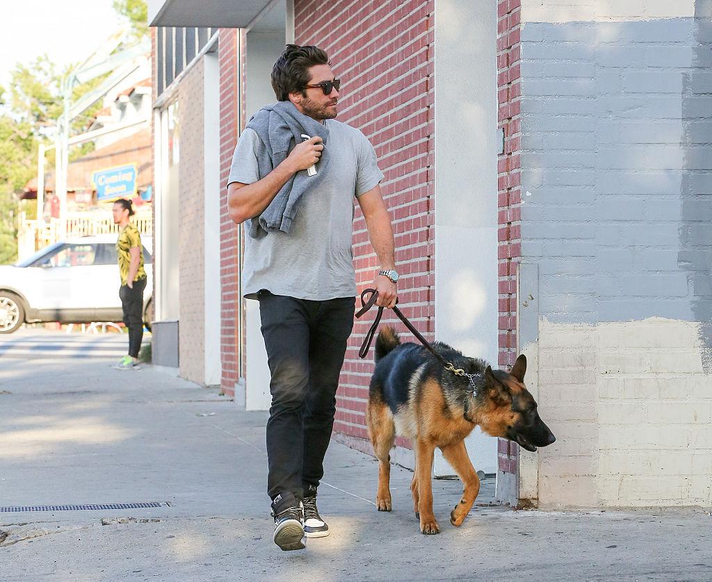 День домашних животных: знаменитости, которые взяли питомцев из приюта