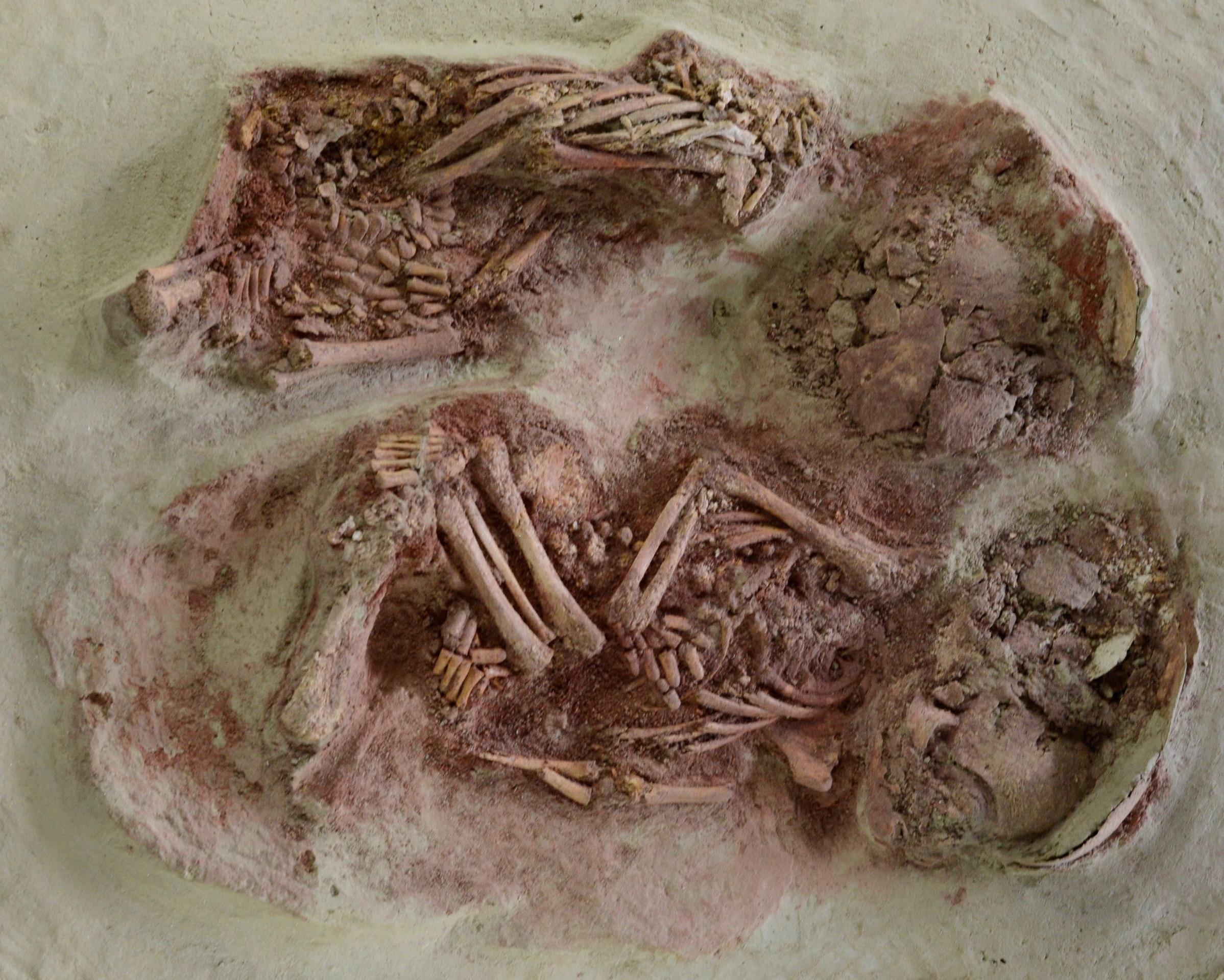 В Австрии нашли древнейших близнецов.Вокруг Света. Украина