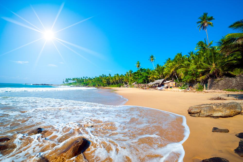 Новогодний сюрприз: открылась Шри-Ланка. Чем заняться на райском острове?.Вокруг Света. Украина