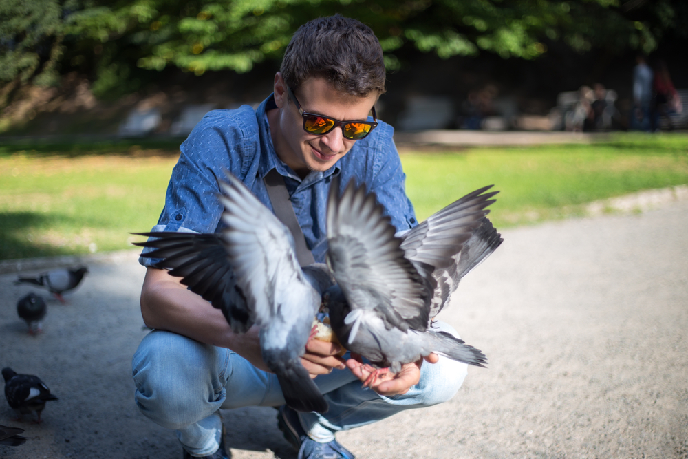 Большое разнообразие птиц приносит людям счастье.Вокруг Света. Украина