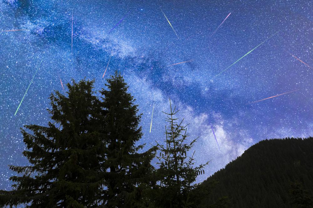 Геминиды: ночью мир наблюдал самый мощный метеорный дождь года