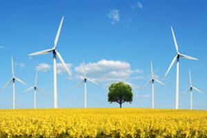 Больше половины энергии в Великобритании вырабатывает ветер