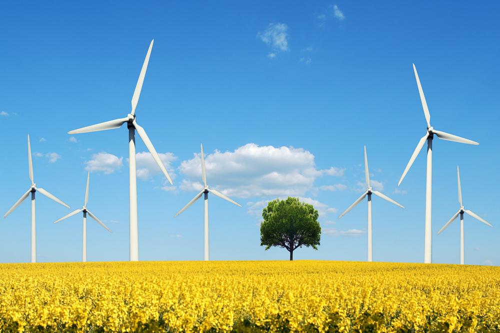 Больше половины энергии в Великобритании вырабатывает ветер.Вокруг Света. Украина