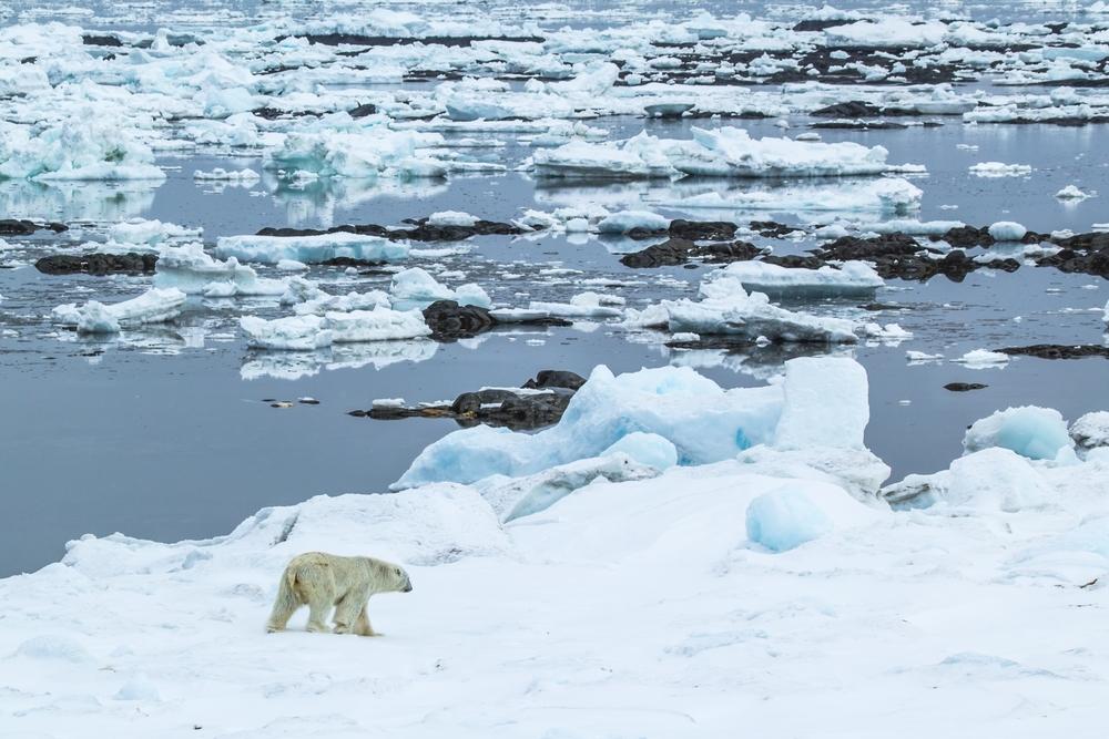 Из вечной мерзлоты под Северным Ледовитым океаном в атмосферу поступает метан