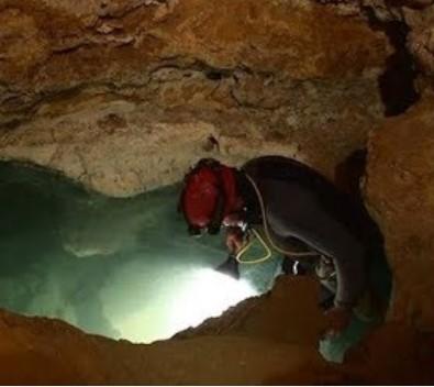 В ядовитой пещере в Румынии обнаружили новый вид животных