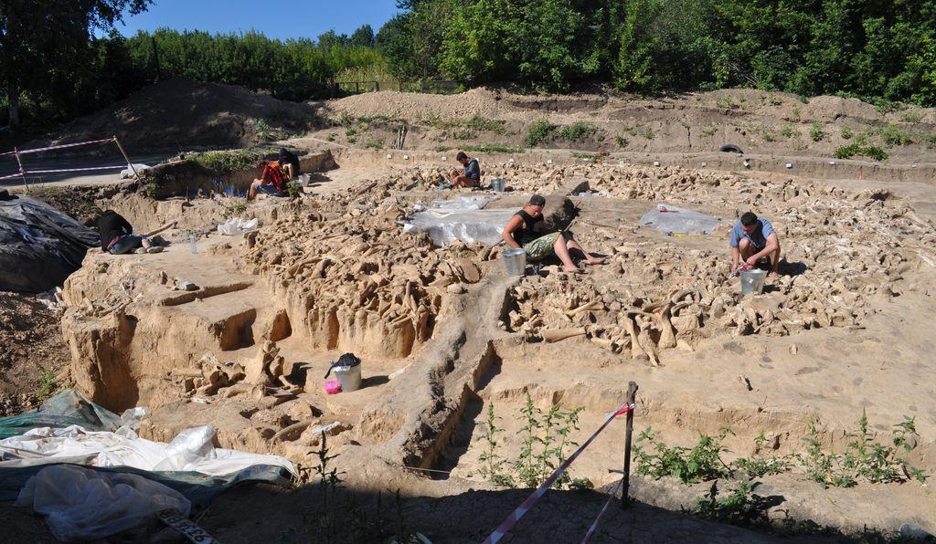 Топ-10 археологических открытий 2020 года.Вокруг Света. Украина