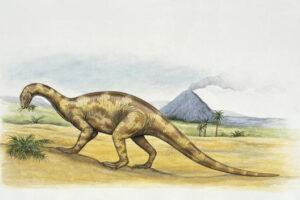Бристольский динозавр ел мясо и ходил на двух ногах