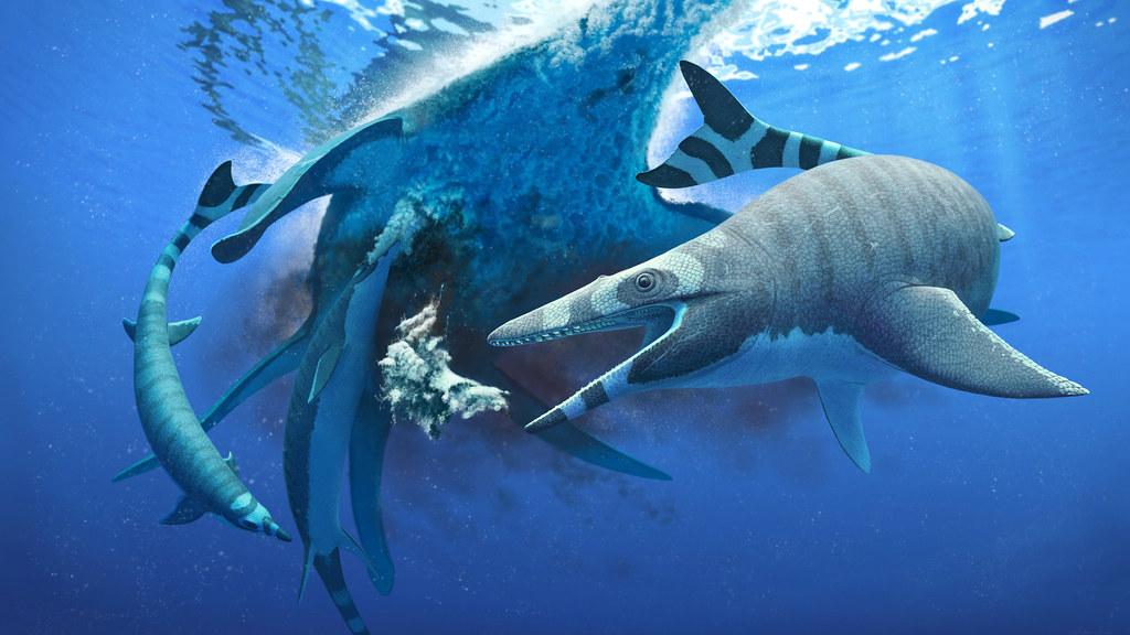 В Марокко обнаружен неизвестный вид мозазавра с акульими зубами