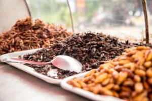 Названо первое насекомое, которое войдет в рацион европейцев