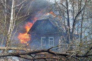 Будут ли этой весной пожары в Чернобыльской зоне и как их предотвратить?