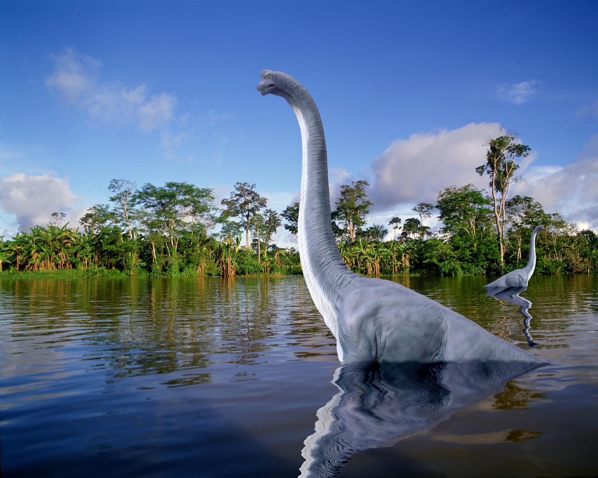 В Аргентине нашли останки очень большого динозавра