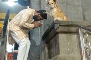 В Индии собака благословляет верующих у храма