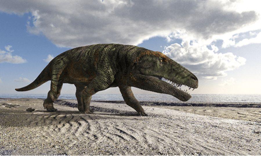Далекий предок крокодилов бродил по итальянским Альпам.Вокруг Света. Украина