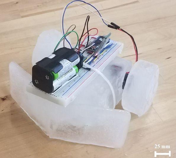 В США сделали робота изо льда