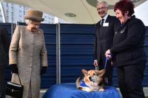 Королевские корги: все о собаках Елизаветы II