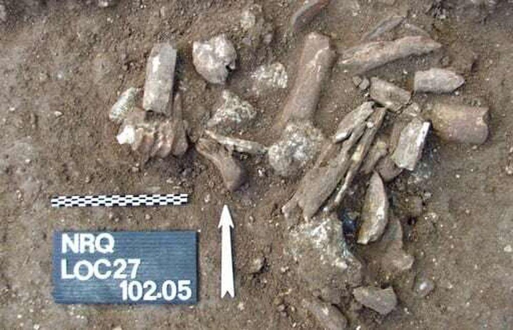 Найдены старейшие из символов, придуманных людьми