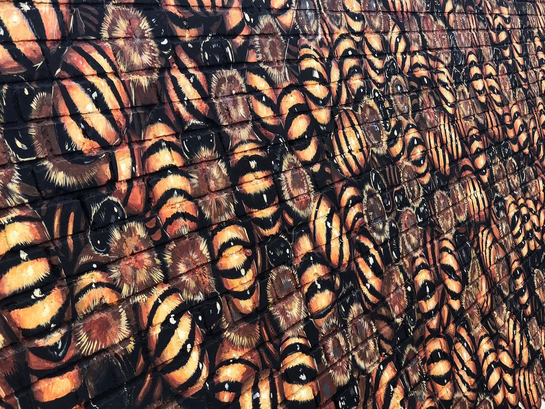 Художник из Нью-Йорка разрисует пчелами всю планету: их будет 50 000