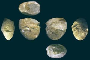 Археологи уточнили возраст древнейшего шлифовального инструмента: ему 350 тысяч лет